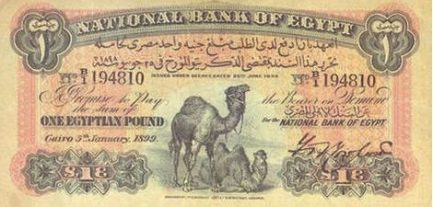 1 Egyptian Pound banknote - Two Camels
