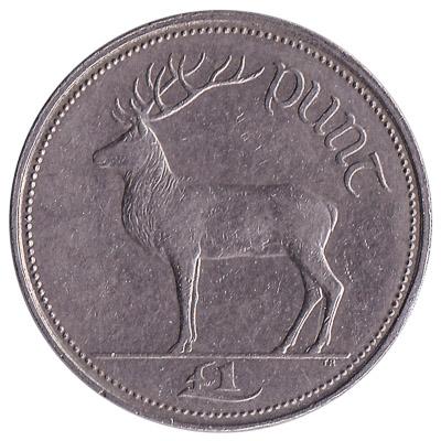 1 Irish Pound coin