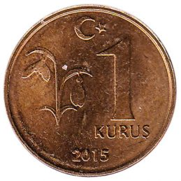 1 Kurus coin Turkey