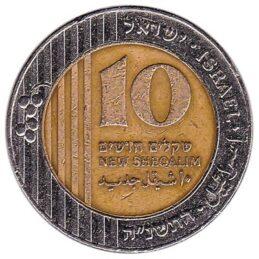 10 Israeli new Shekels coin