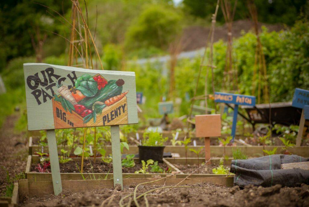 earthworks St Albans plots