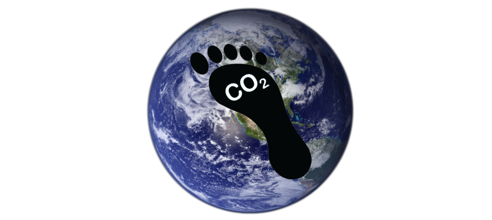 carbon footprint of cash